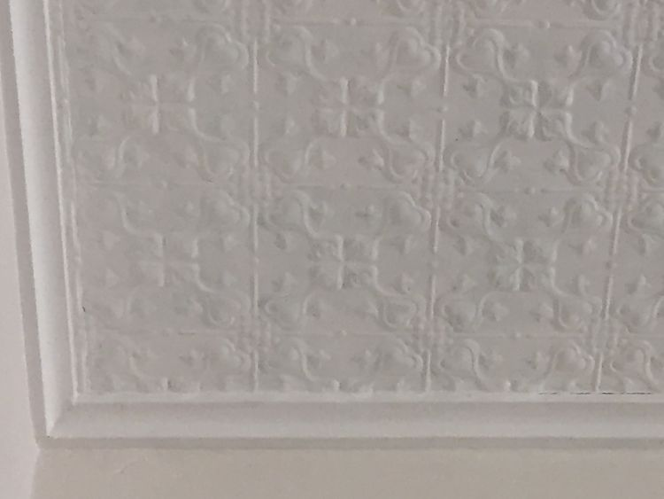 Lizards Design White Ceiling